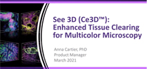 Tutorial: See 3D (Ce3D™): Enhanced Tissue Clearing for Multicolor Microscopy