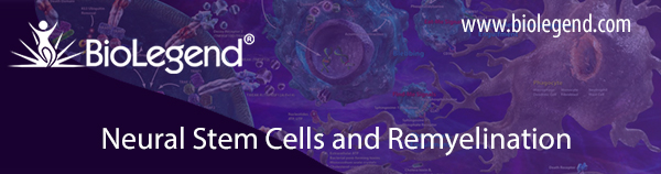 Neural Stem Cells and Remyelination