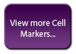View more cell markers...