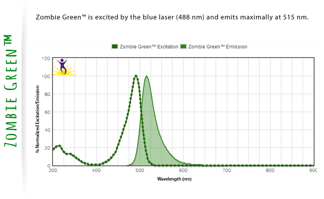 Zombie Green is excited by the blue laser (488nm) and emits maximally at 515 nm