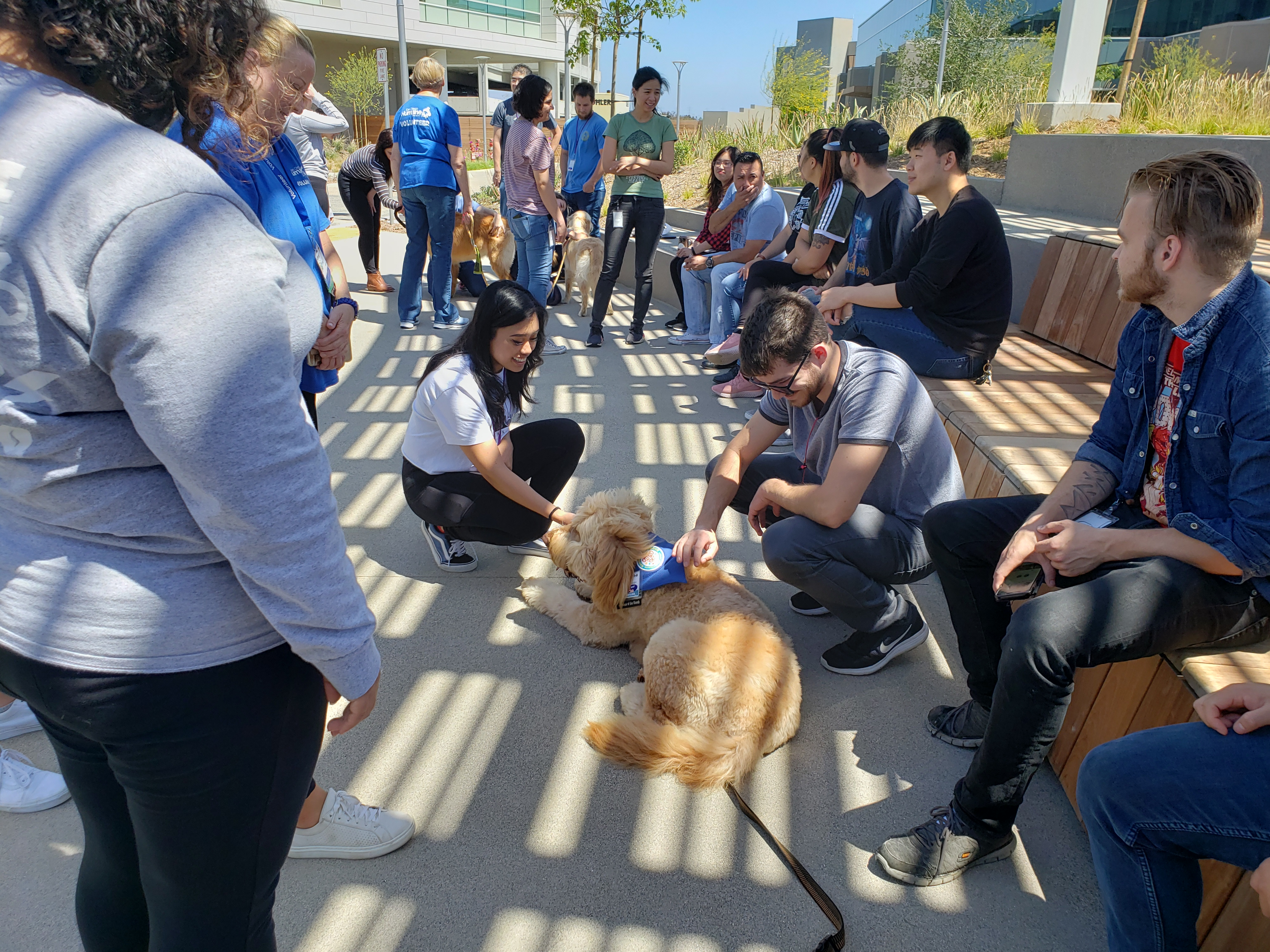 Pet Therapy day brought to us by the San Diego Humane Society volunteers